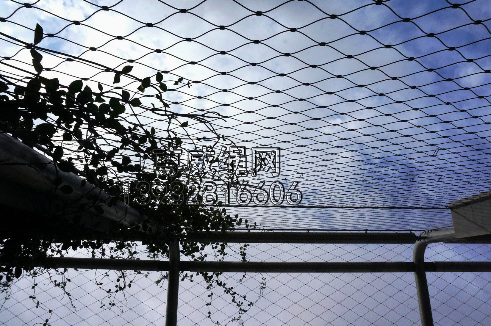 尊威黑色不锈钢绳网